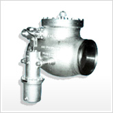 tve extraction steam non return Valve
